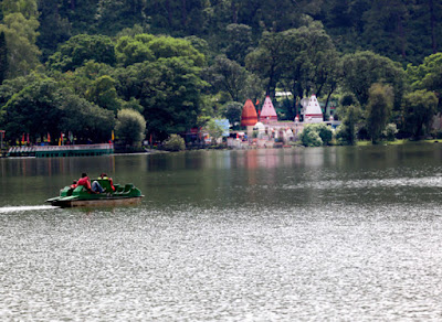 Forest in Mansar Lake