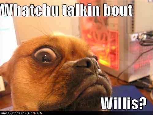 Labels: Girl Dog Names · Boy Dog Names Dog Quotes Dog Quotes · Funny ...