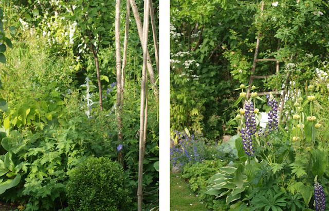 Den nemme, frodigevilde have