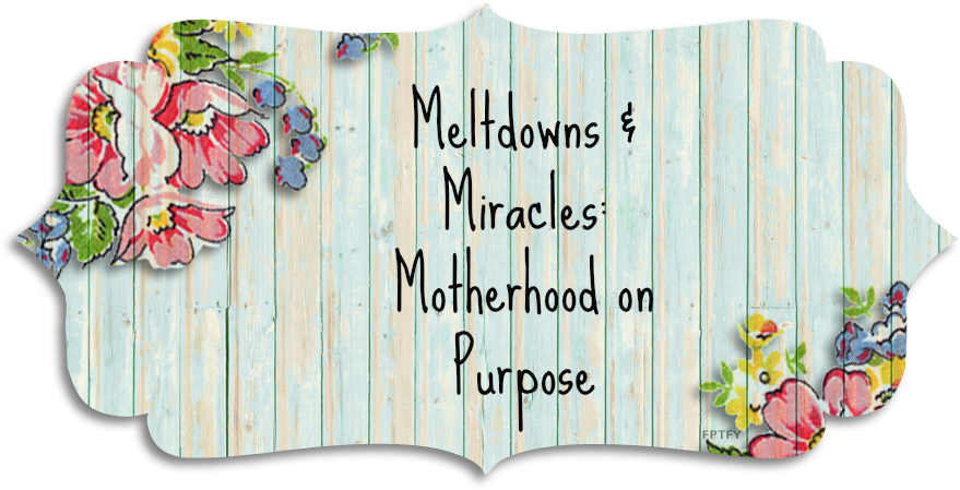 Meltdowns and Miracles: Motherhood on Purpose