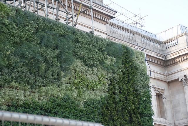 Museu de Londres tem jardim vertical inspirado em pintura de Van Gogh