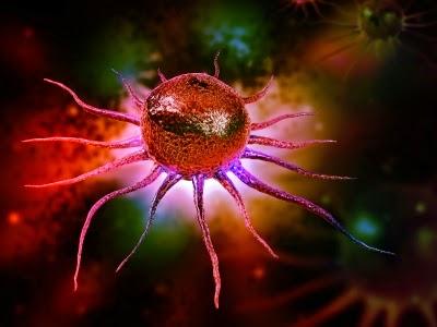 بحوث الخلايا الجذعية ومستقبل صحة الانسان