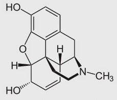 morphine morfina structure estructura
