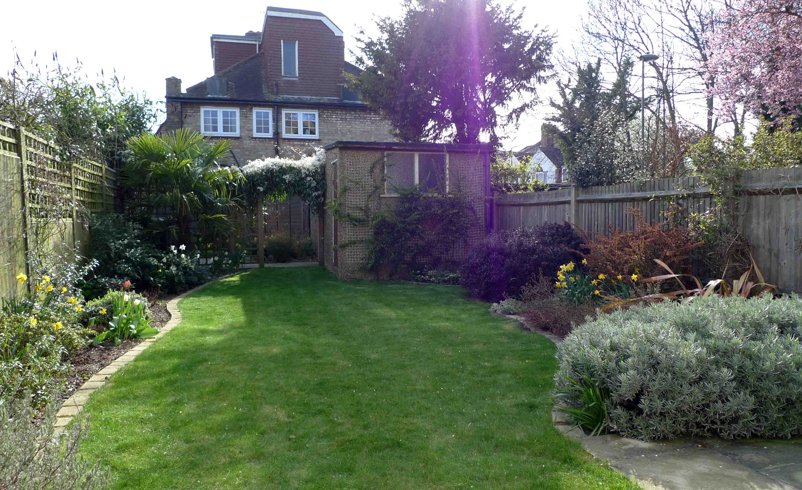 Contemporary garden by appletree garden design for Garten inspiration