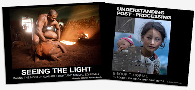 Buy ebook Seeing the Light and Understanding post Processing