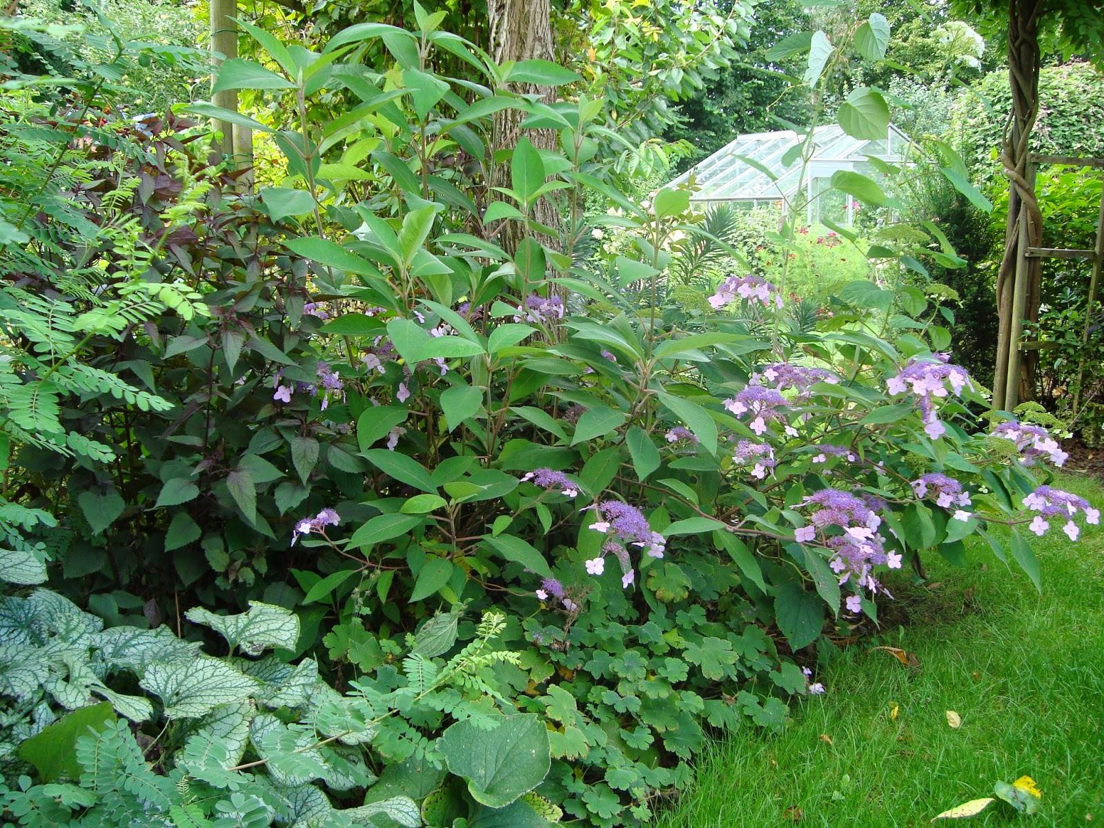 Passionn ment jardin joli coin au jardin for Au coin du jardin montville