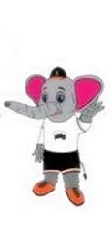 Maskot Sukan Malaysia  XV (Sukma Pahang 2012): Teku (anak gajah jantan)