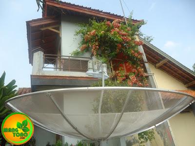 Memasang Antena Parabola
