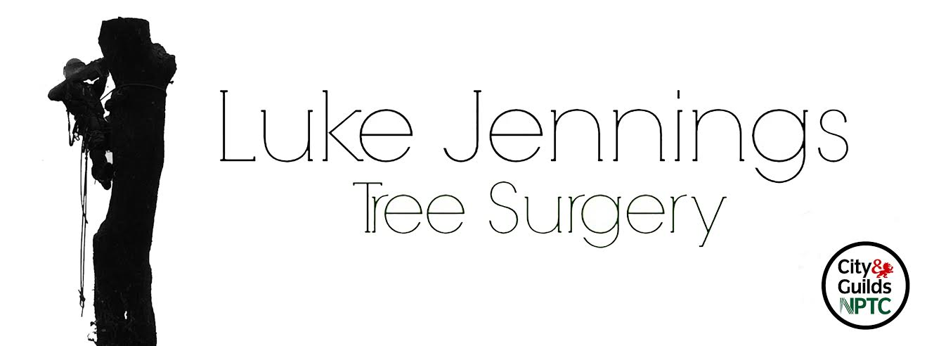 Luke Jennings Tree Surgery