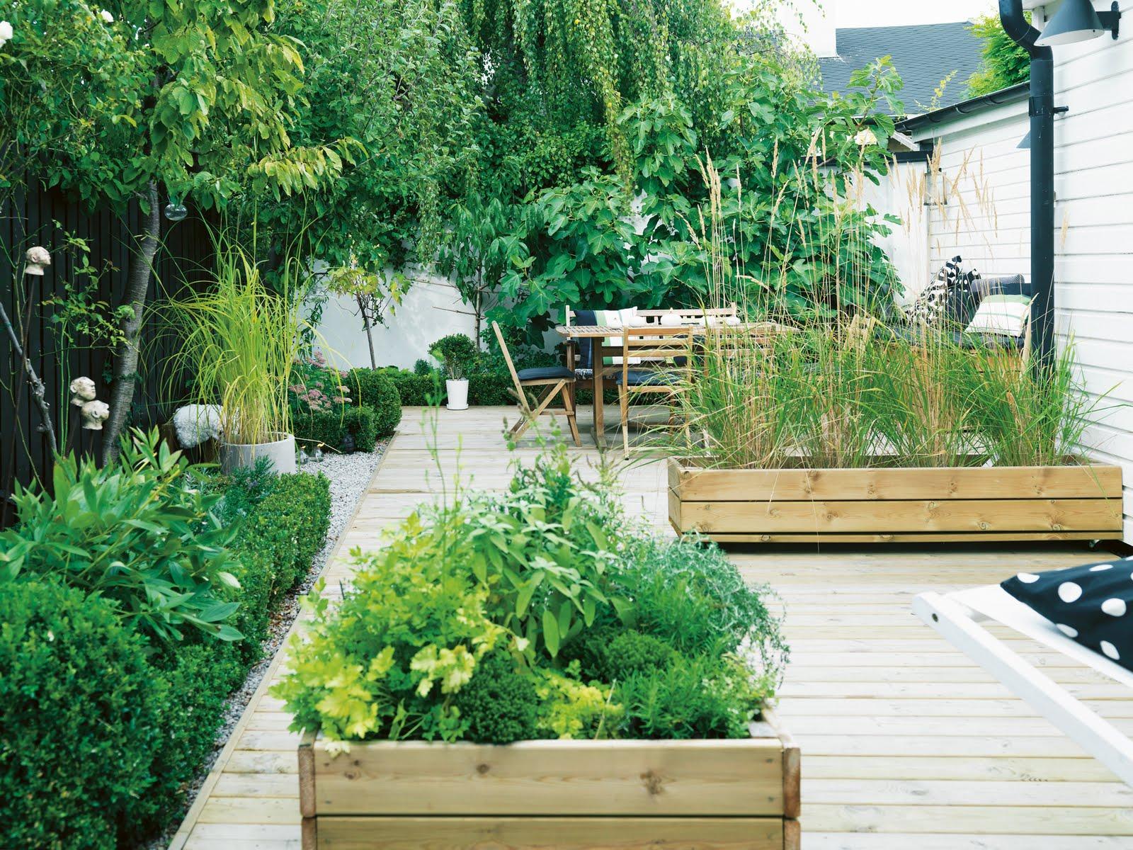JARDINS MARAVILHOSOS .: caixas de madeira no jardim . #6F9536 1600x1200