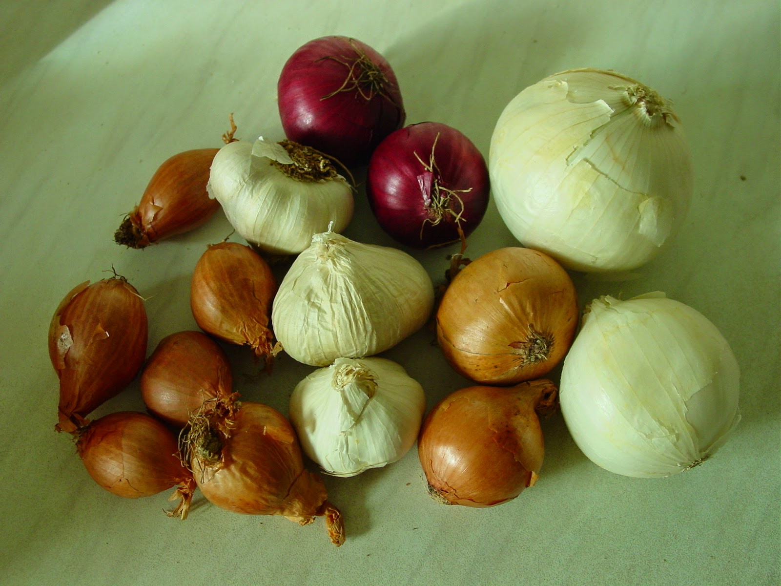 bawang untuk pemanjang mr p pria dan cara membuat jamu