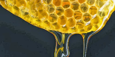 Permalink to Reduce 1.4 kilograms weight per week with honey