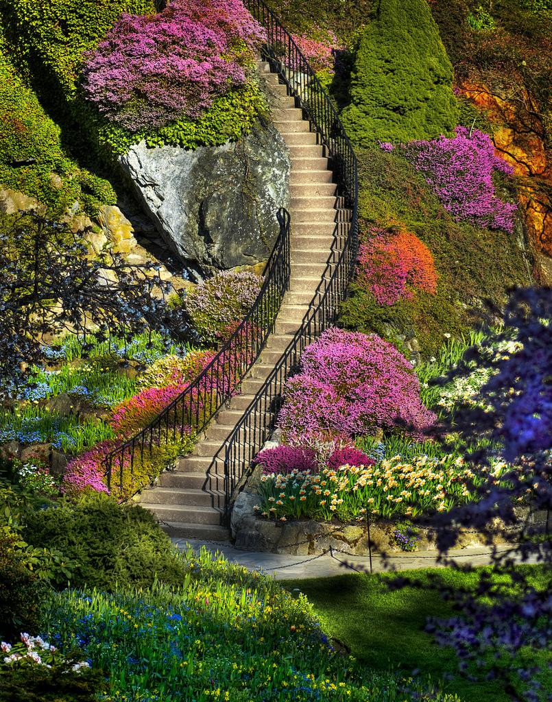 Quelle est votre vision sur Paradis Butchart+Gardens