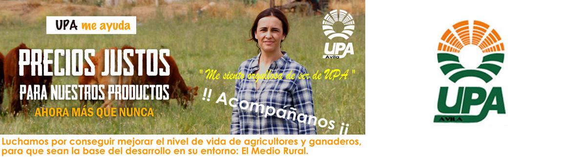 UPA-Ávila