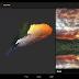Real Colors, una App necesaria para todo diseñador