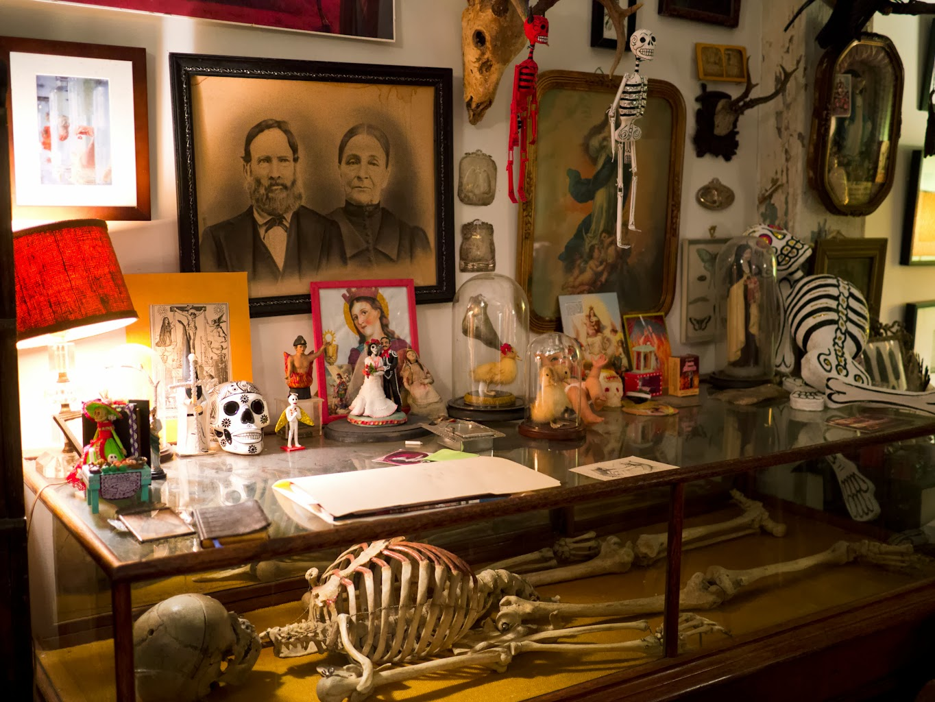 Morbid Anatomy: Support and Become Part of the Morbid Anatomy Museum ...
