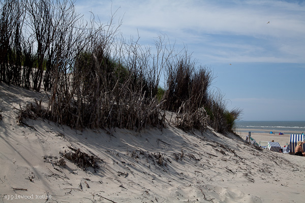 Norderney Strand weisse Duene