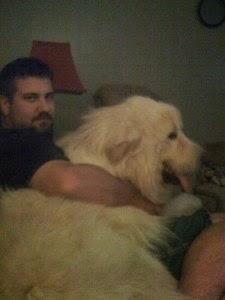 Meet Buddy, Our New Fur Buddy!