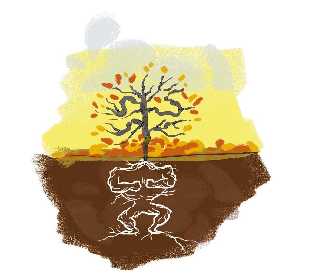 схема гороскопа по знаку зодиака дерево