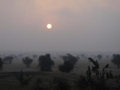 Desert in Rajasthan, Thar desert Jaisalmer