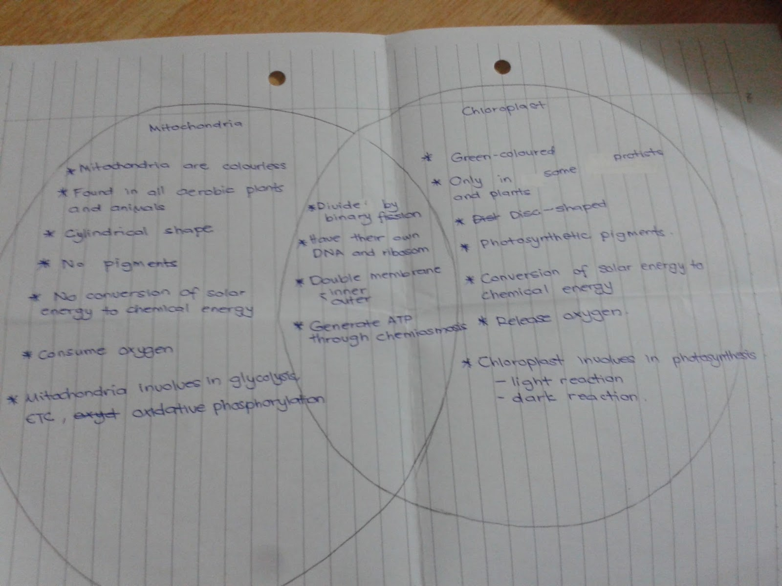 Venn diagram cytokinesis plant animal cells - There Are A Lot Of New Things That I Have Learned This Week As For Next Week Dr Parameswari Is Going To Teach Us Cell Cycle And Totipotency