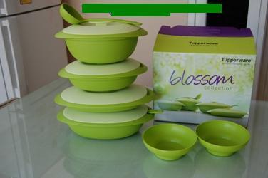 Ditawarkan Dengan Harga Dibawah Normalblossom Collection Tupperwareperlengkapan Meja Makan Lengkap Hrga Normal Rp620000 Lhoo