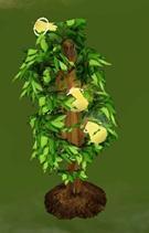 Planta de la fruta de la vida sims 3
