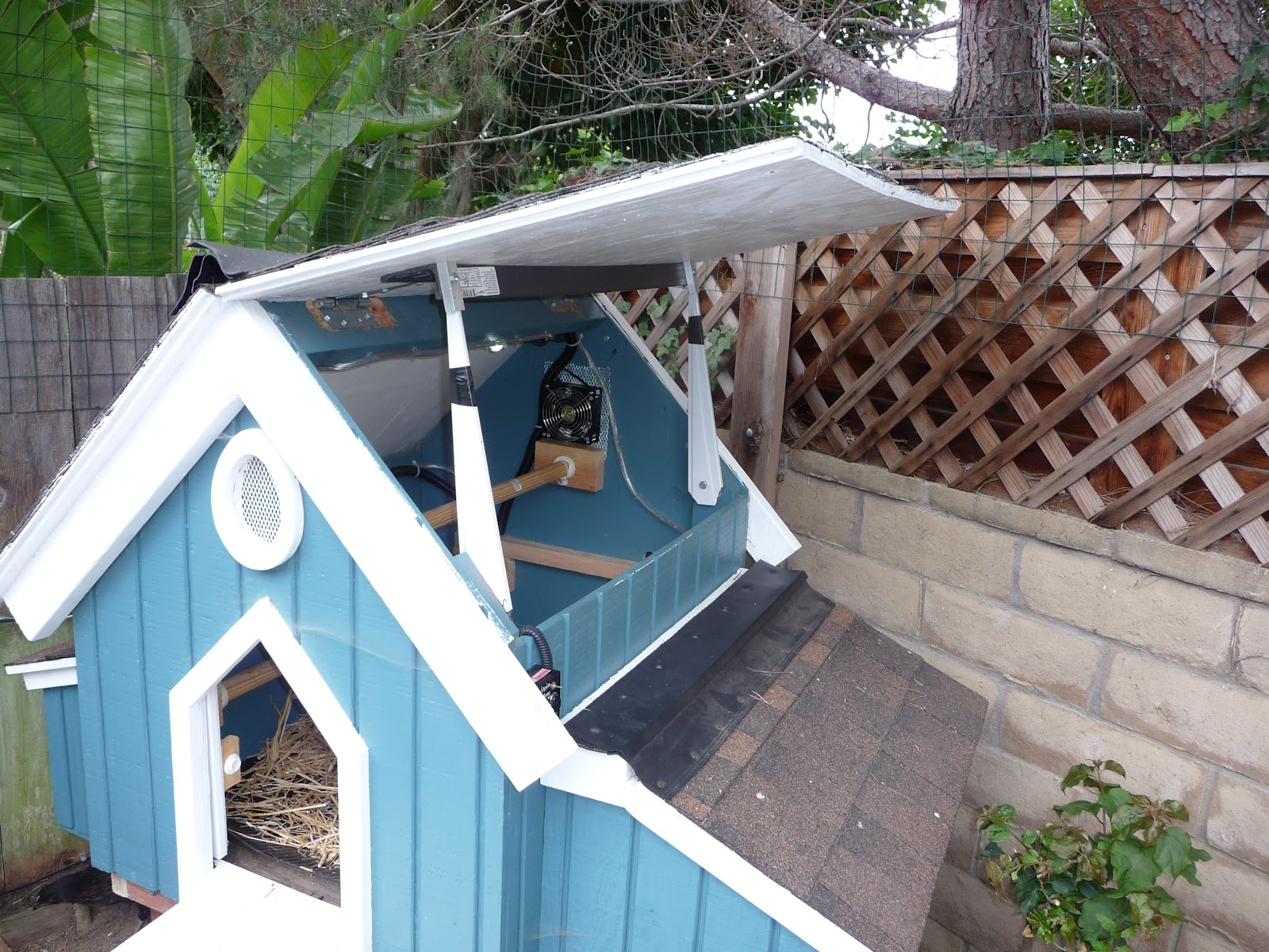 P1100360 dog house hinged roof plans noten animals,Dog House Plans With Hinged Roof