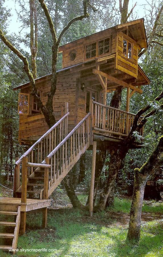 Casa del árbol cabaña de madera con escalera fija