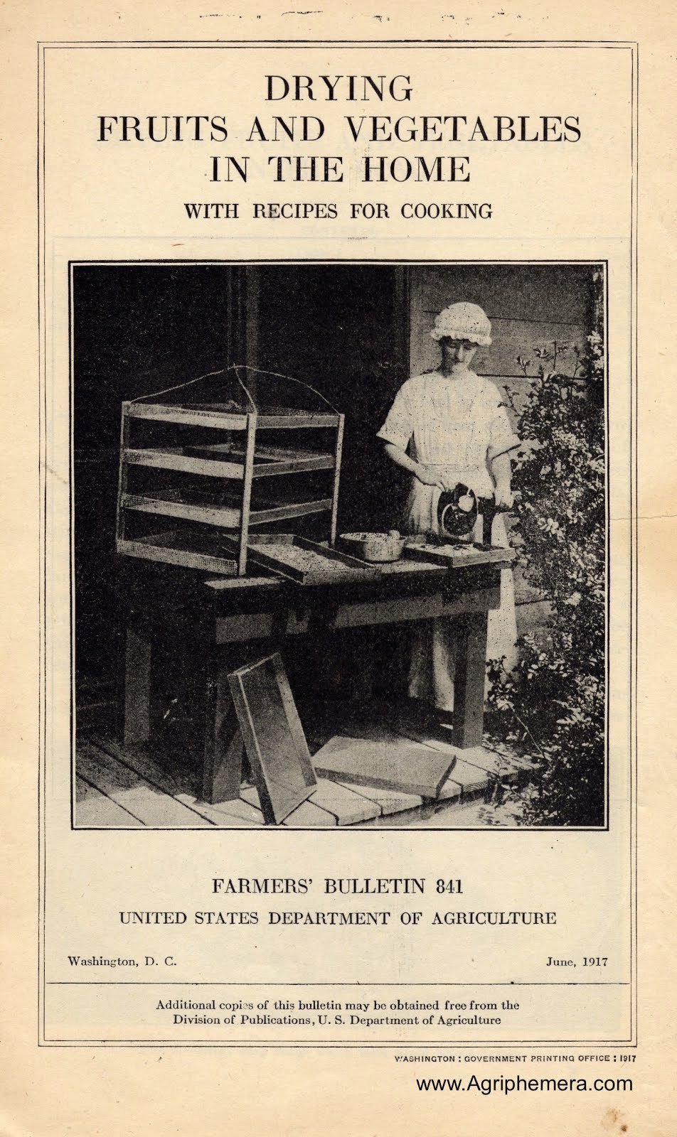Drying Fruits and Vegetables In The Home (1917)