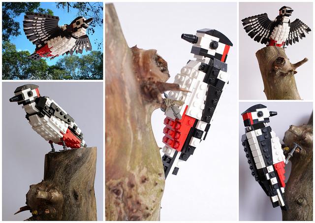pajaros de Lego. pajaro carpintero. Woody Woodpecker