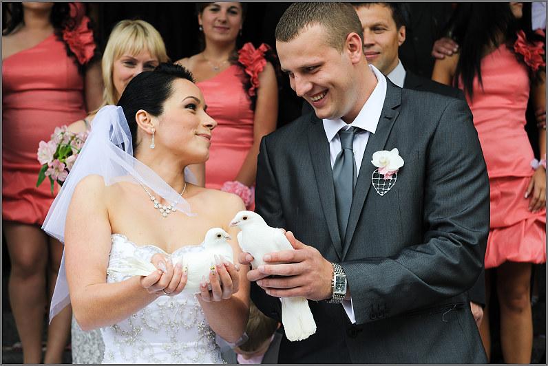 Rožinės vestuvės
