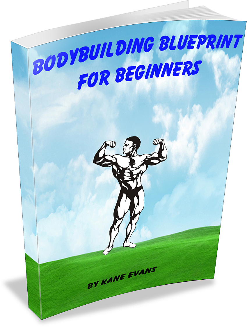 Bodybuilding Blueprint For Beginners