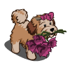 FarmVille Broken Heart Dog - FvLegends.Com