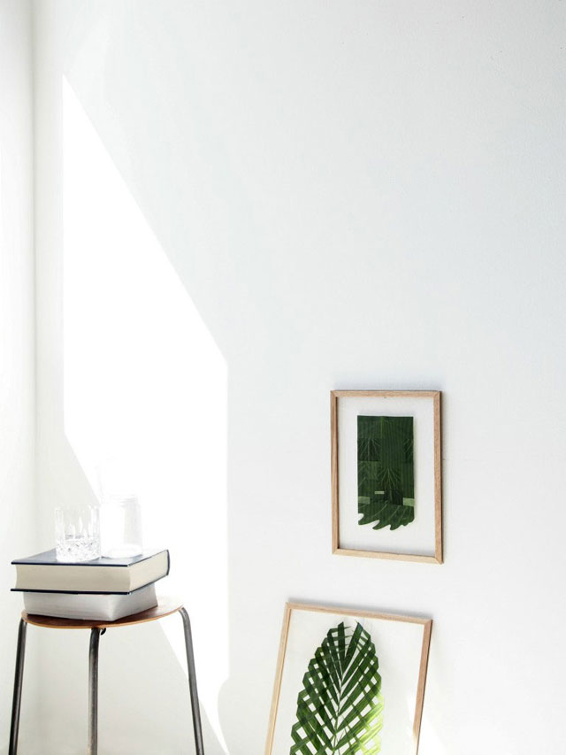 DIY: plantas enmarcadas para decorar la pared