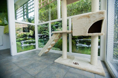 Beautiful cat house Seen On www.coolpicturegallery.us