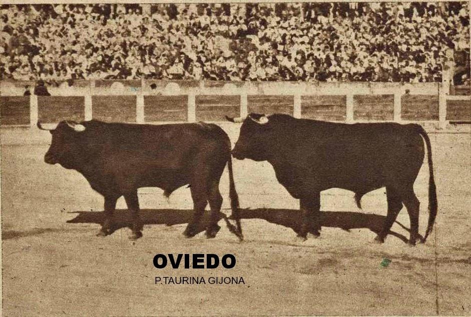 toros en oviedo