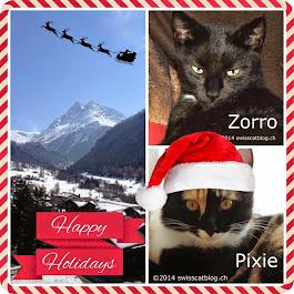 Merry Christmas Zorro, Pixie and family!