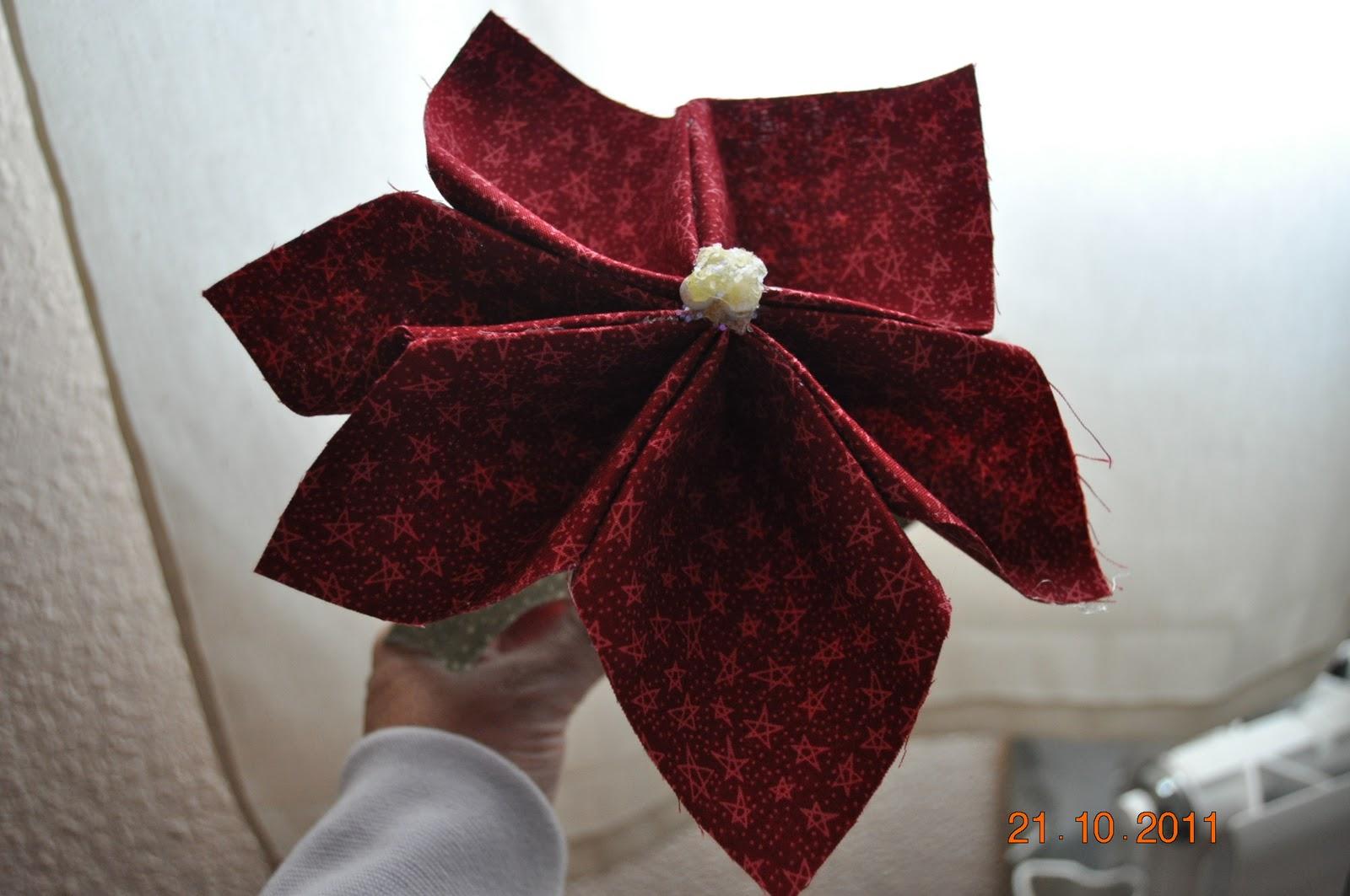 10 01 2011 11 01 2011 un poco para compartir - Que cuidados necesita la flor de pascua ...