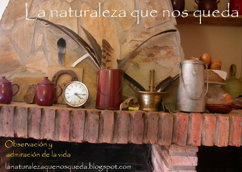 La Naturaleza que nos queda