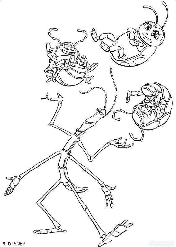Circus Animals Coloring Pages