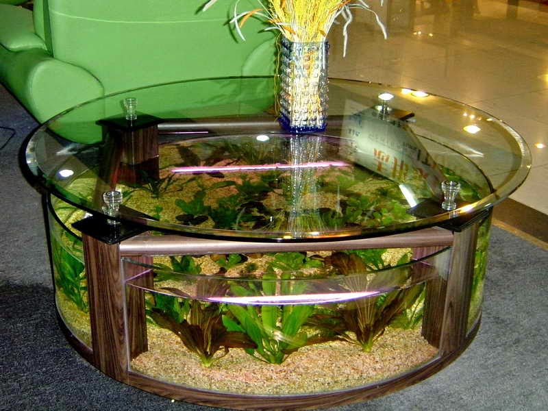 idée décoration pour aquarium