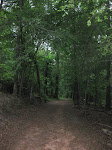 Trail Running: Get GUTS