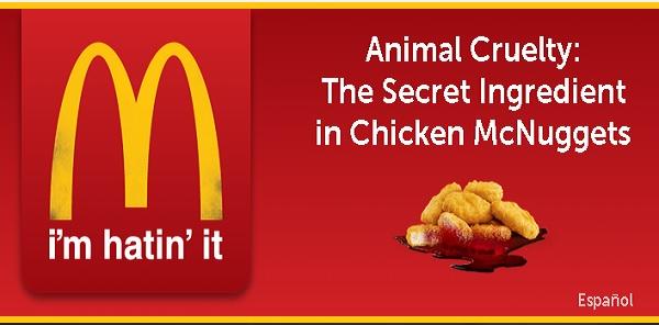 Ayam McDonalds tidak halal.