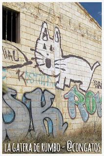 Gato Miau La Roda Albacete