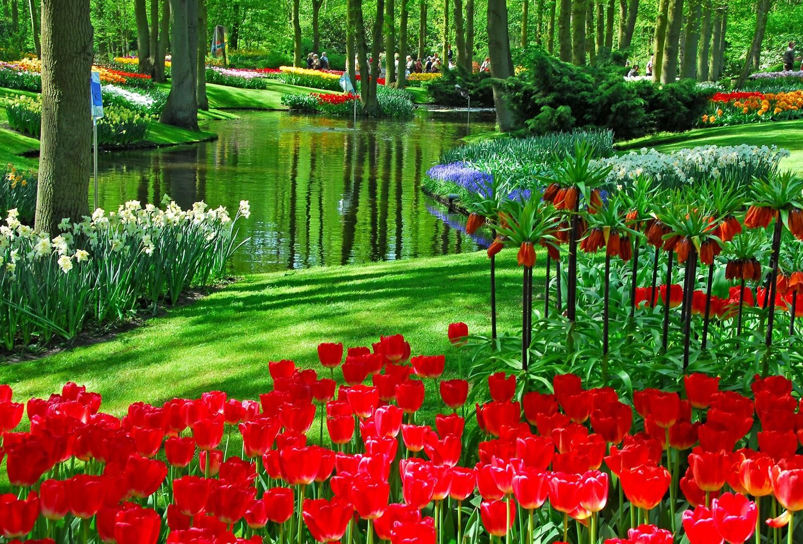 Image gallery jardin de flores hermosas for Casas con jardines bonitos