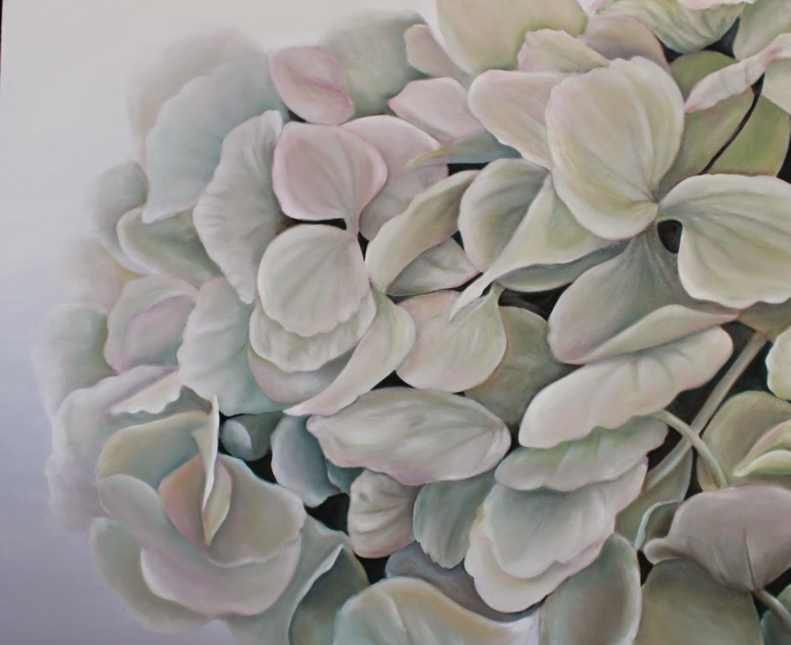 Image Result For Hydrangea Flower Coloring