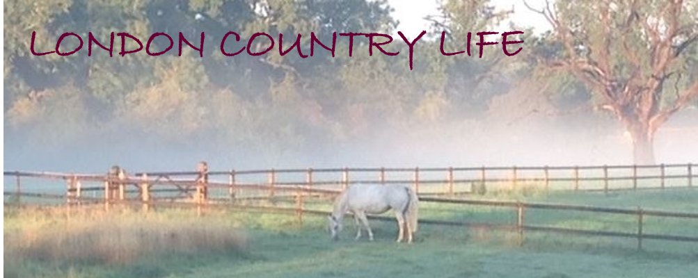 London Country Life