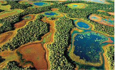Foto veiculada no site Viajeaqui do nosso Pantanal