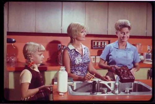 The Brady Bunch Blog: In the Brady Kitchen